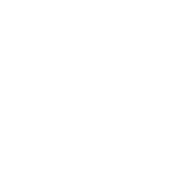 Logo Catalan blanc sans texte